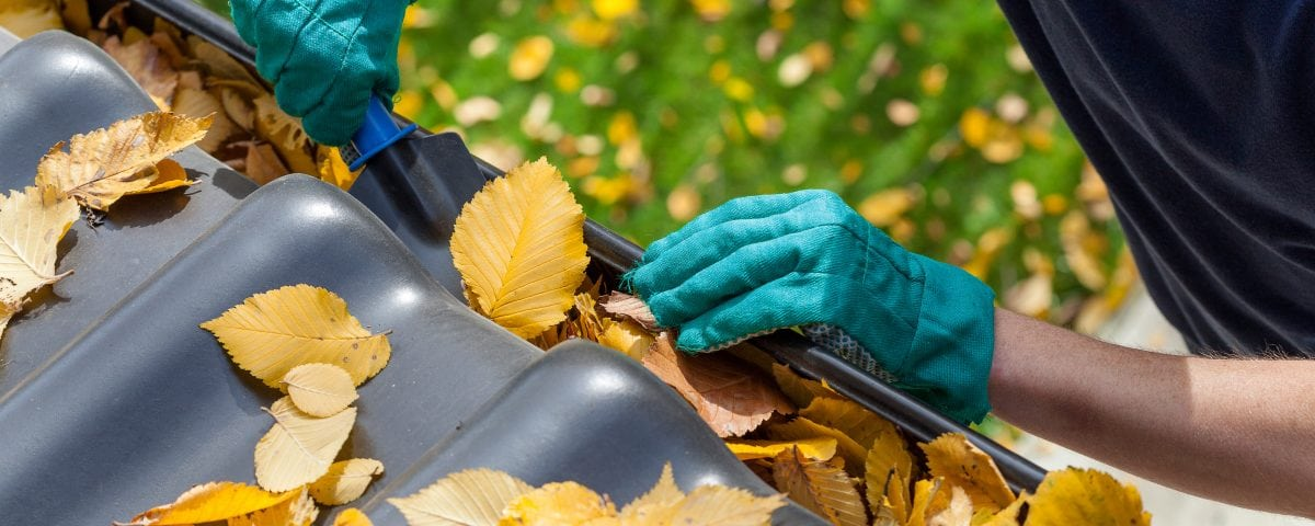 Top Reasons to Keep Your Home's Gutters in Good Repair DTI U